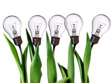 creative_lamp_bulb_tulips